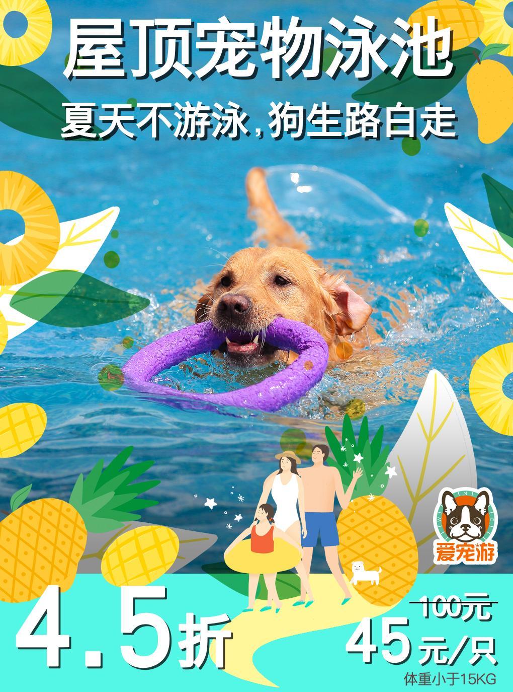 爱宠游 | 沪上宠物游泳券