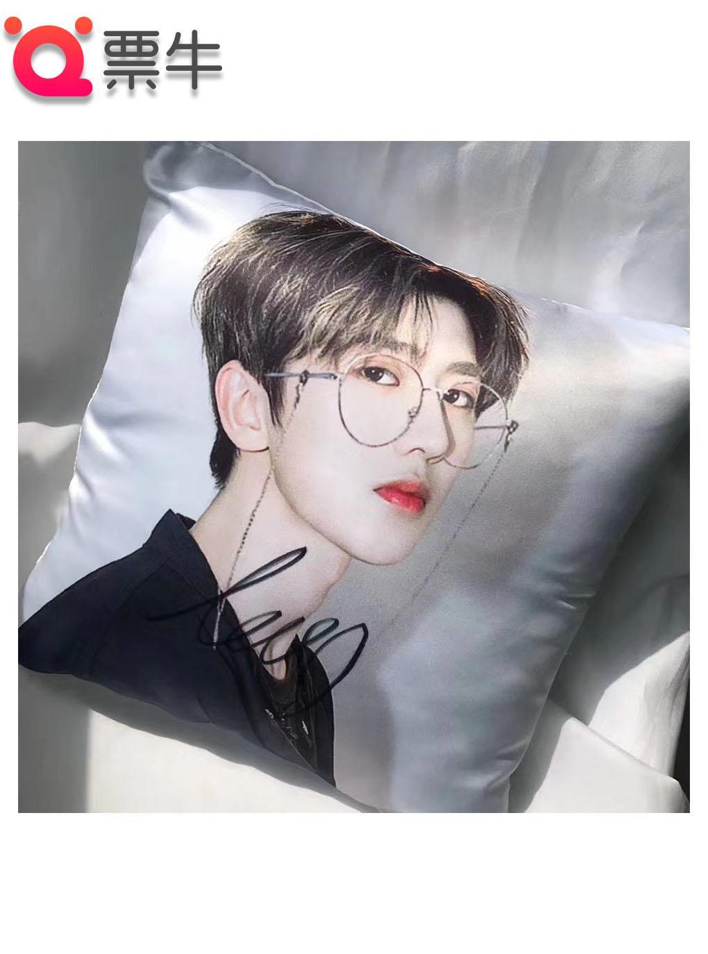 蔡徐坤亲签抱枕