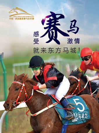 武汉速度赛马公开赛