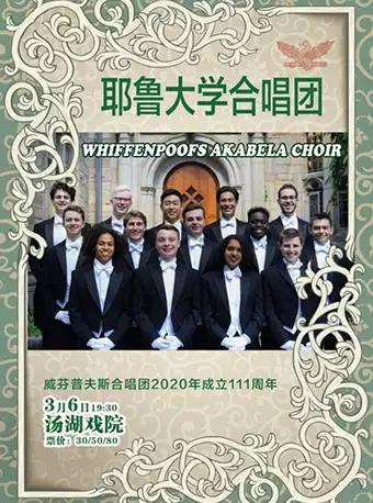 耶鲁大学男生合唱团合唱音乐会