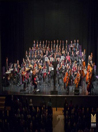 维也纳之声2020新年音乐会 长沙