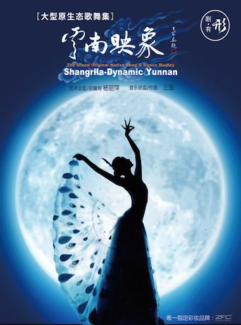 杨丽萍作品·大型原生态歌舞集《云南映象》