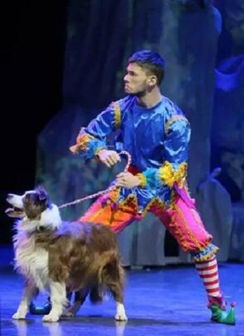 《小丑动物嘉年华之梦幻世界》