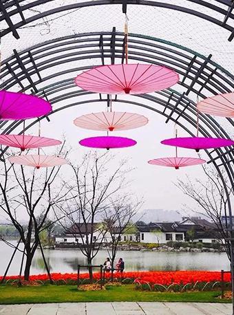 寧波植物園