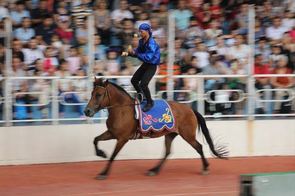 上海野生动物园光看马戏不过瘾还有精彩动物表演带你乐不停