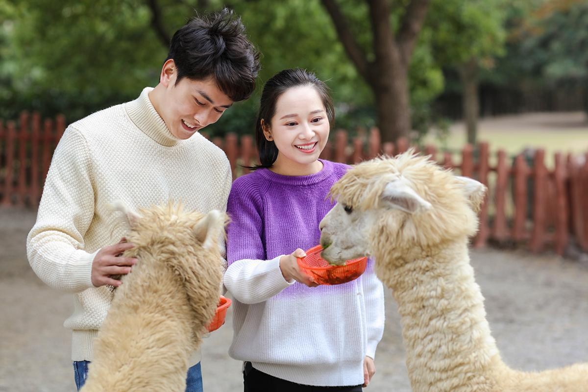 上海野生动物园零距离互动点