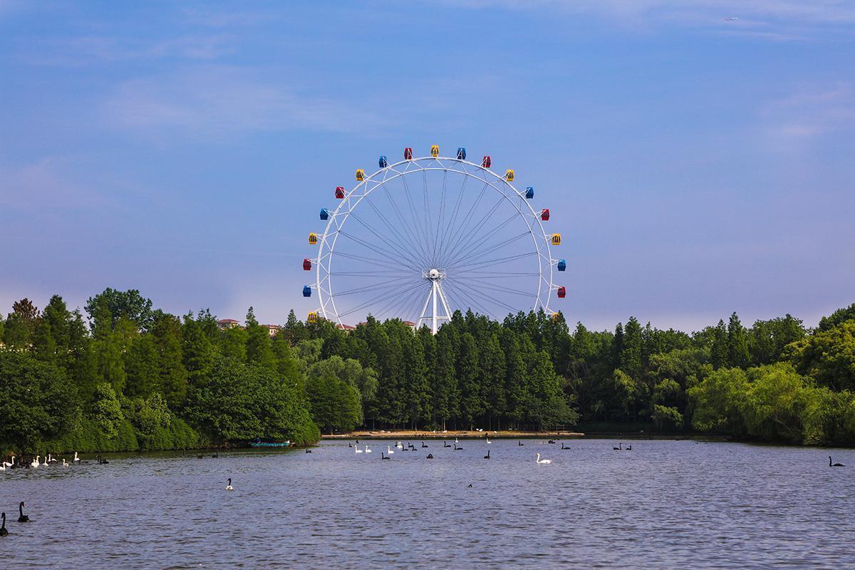 上海野生动物园游乐场